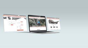 Diseño gráfico y diseño web en Torrelodones y Galapagar.